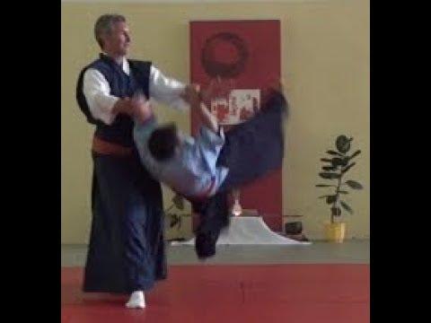 4/20 A propos de la verticalité AÏ KI DOÏ Aïkidô d'un Maître Zen