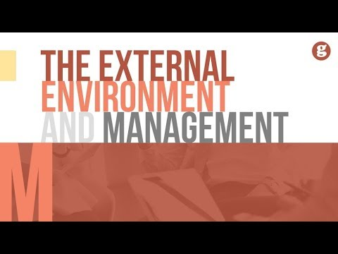 The External Environment and Mangement