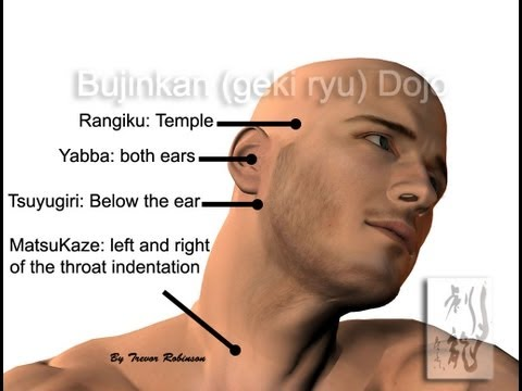 PRESSURE POINTS OF THE NECK (New)