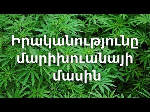 Իրականությունը մարիխուանայի մասին (Հայերեն թարգմանությամբ)