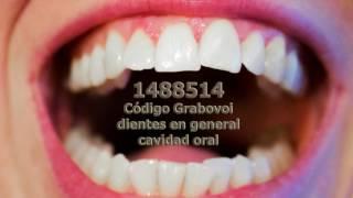 Codigo Grabovoi general 1488514 para enfermedades de los die...