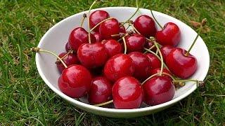 Cherries health benefits. Healthy life.