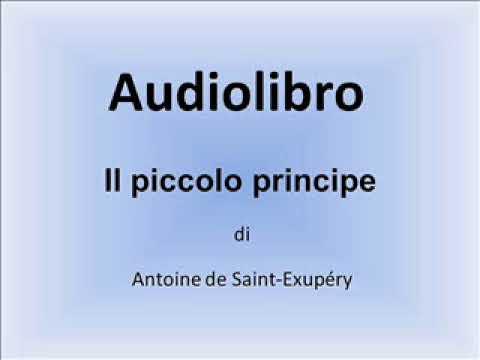 audiolibro il piccolo principe capitolo 26
