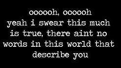 No Words by The Script (Lyrics)