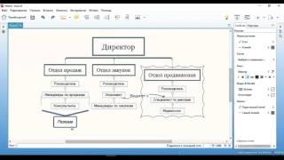 Структура персонала: организационная и функциональная структура служащих (видео)