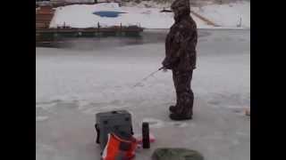 видео Рыбалка по каширскому шоссе видное. ПЛАТНАЯ РЫБАЛКА НА КАШИРСКОМ ШОССЕ