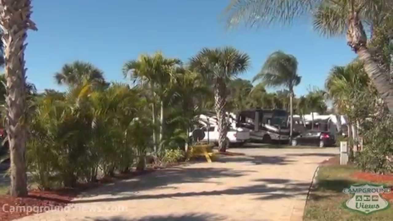 Florida naples hookup images