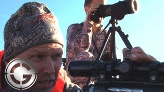 Wyoming Elk At 1090 Yards Kill Shot - Long Range Hunting