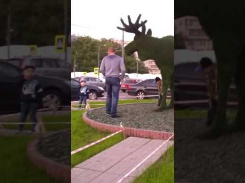 Лось это символ Гольяново! This elk symbol Golyanovo!