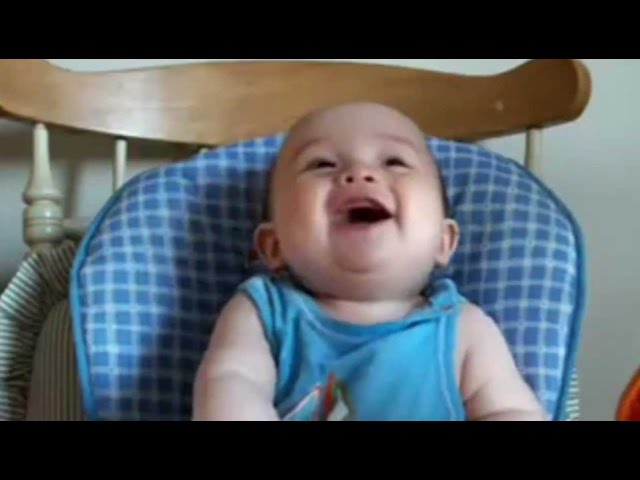 Best Babies Laughing Video Compilation 2012