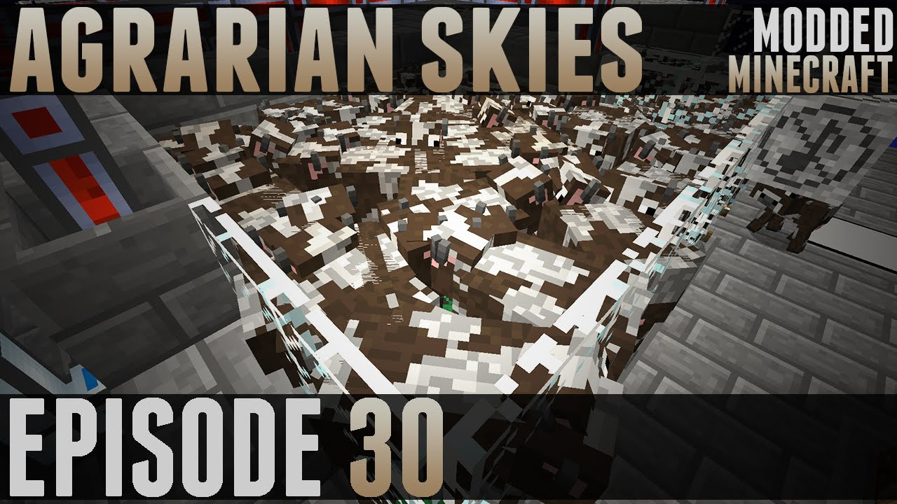 how to set up a agrarian skies server