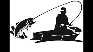 Щуки Судаки Окуни попали на клёв удачная рыбалка