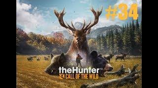 the Hunter Call of the Wild прохождение на русском. Часть 34 - Тестируем новый прицел для винтовки