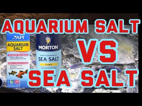 Save Money In The Aquarium Hobby: API Aquarium Salt | Sea Salt | Sea Salt For African Cichlid Tanks