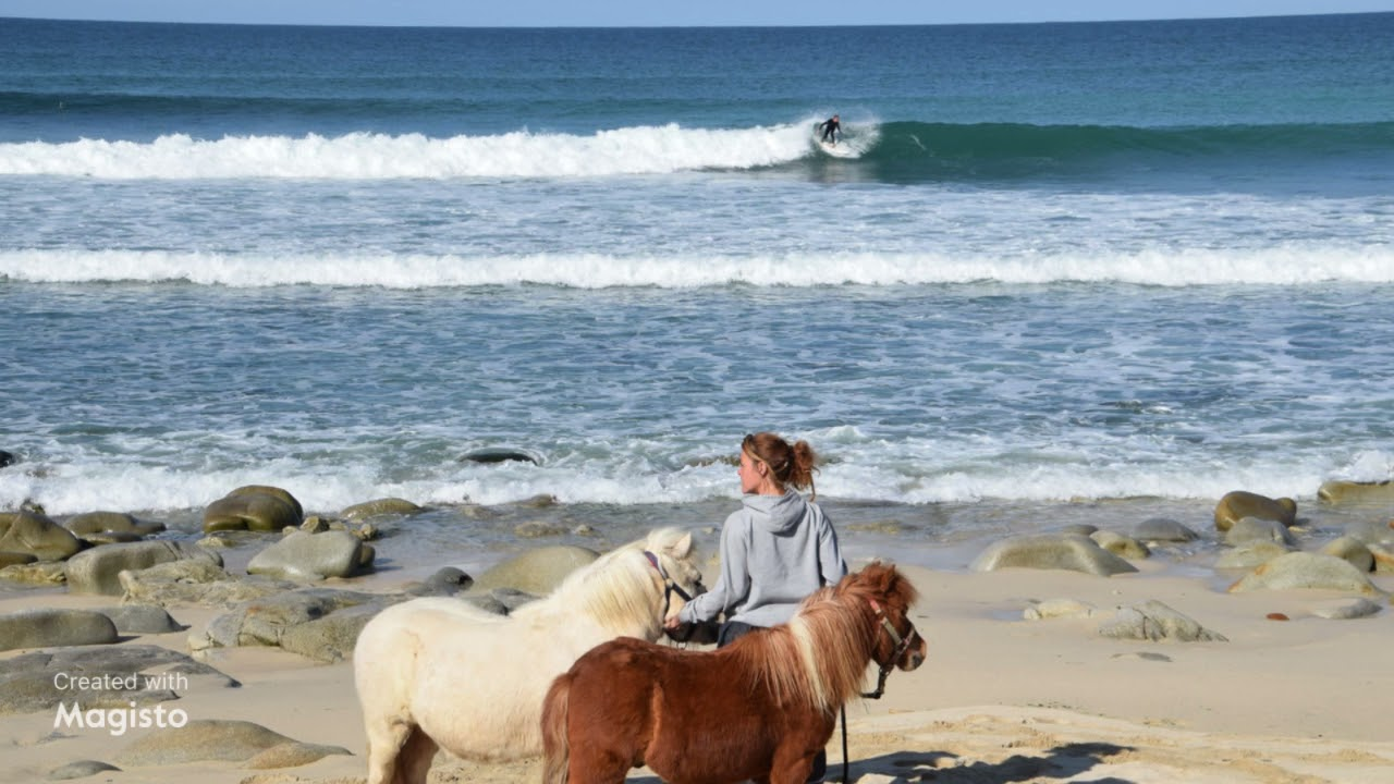 🐾Balade dominicale pour les poneys!🐾  🐴🐴