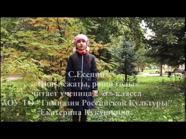 Изображение предпросмотра прочтения – ОльгаКукушкина читает произведение «Нивы сжаты, рощи голы…» С.А.Есенина