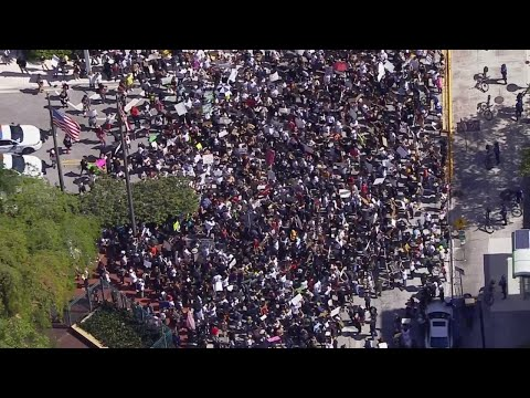 WEB EXTRA: Protest Held In Downtown Miami