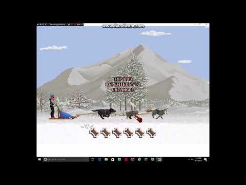 Dog Sled Saga Episode 1 The Journey Begins! (With Mr. Assistant)  