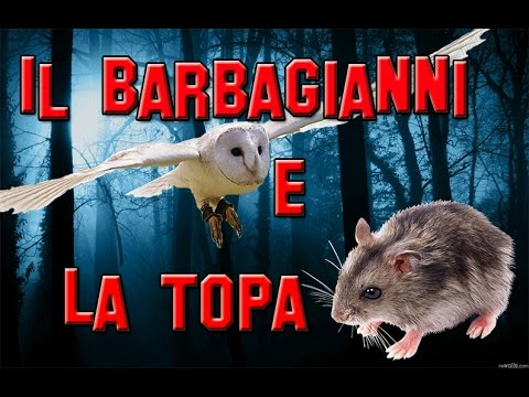 Il Barbagianni e la Topa - YouTube