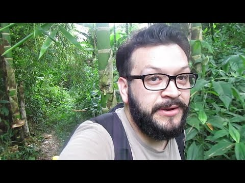In The Jungle of Colombia - Vlog 40 - (20.03.2015)
