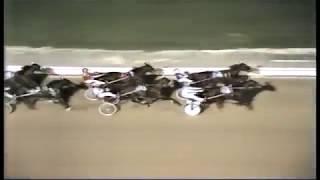 1981 Roosevelt Raceway - Open Pace - Secret Service