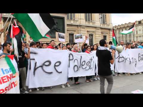 "Free Palestine! From Torino (Italy)_""2"" 13-07-2014"