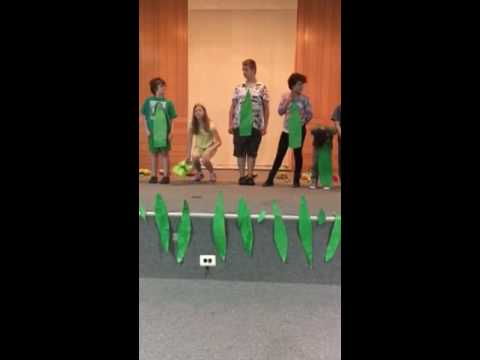 White Clay Learning Center 2016 end of year performance
