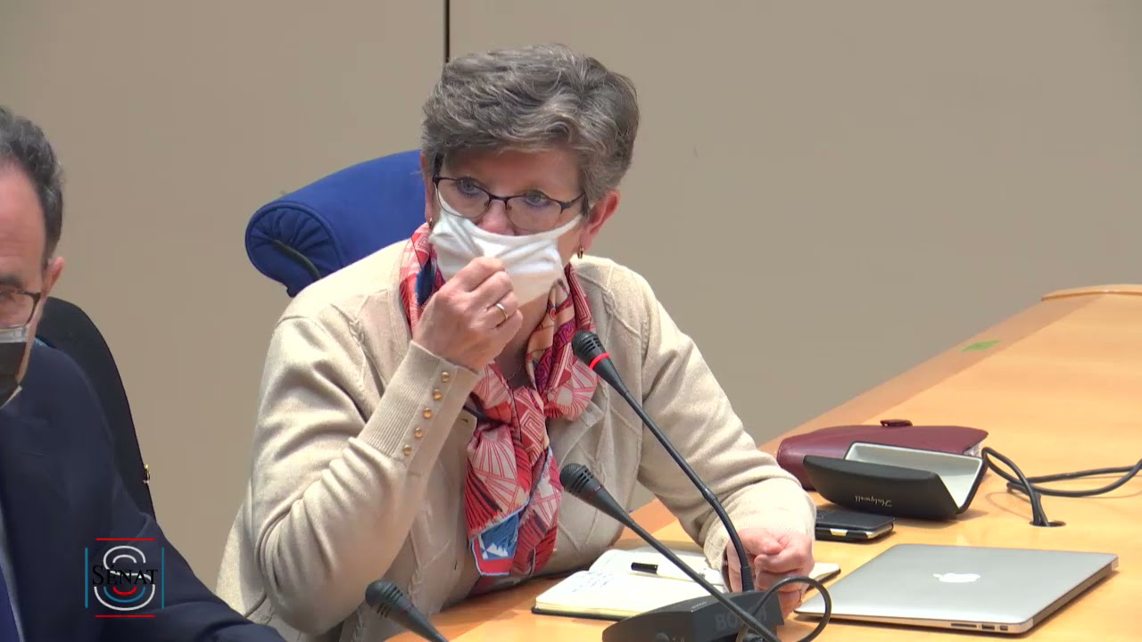 Audition par la commission des lois de l'association de la Convention citoyenne pour le climat