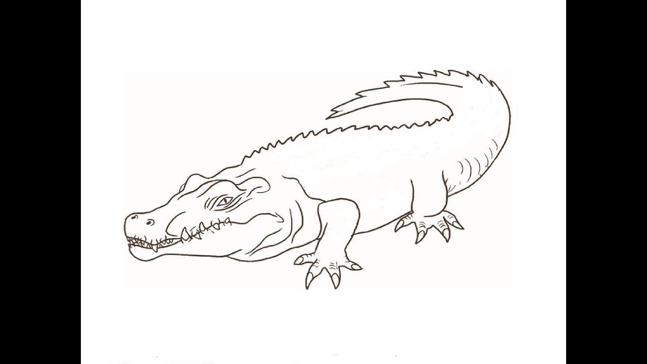 фото как нарисовать крокодила