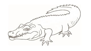 How to Draw a Crocodile / Как нарисовать крокодила(Drawing Channel - https://www.youtube.com/channel/UCaZm6IvtL9zNeDwQi571asA/videos Канал для рисования ..., 2015-04-22T11:19:39.000Z)