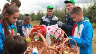 Год молодёжи | Минский государственный областной колледж
