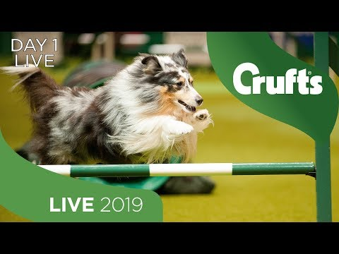 Day 1 Live | Crufts 2019