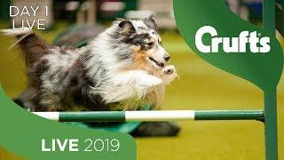 day-1-live-crufts-2019
