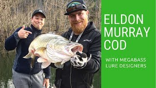 We found the lost rod! - Lake Eildon Murray Cod with Megabass Japan lure designers