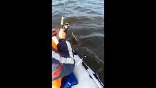 рыбалка на белом море(, 2014-12-11T13:15:30.000Z)