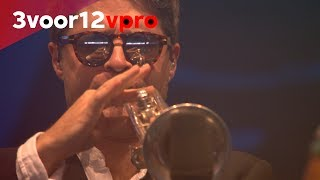 Fat Freddy's Drop - Slings & Arrows + Black Bird - Live at Pinkpop 2017