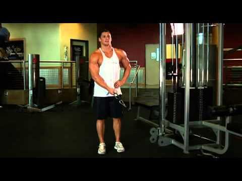 Standing Low Pulley Deltoid Raise Omuz Hareketi Nasıl Yapılır - FitnessProgrami.com