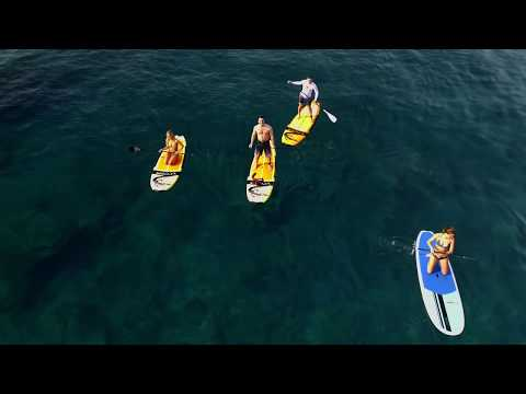 Surfing in Kona at Kahalu'u Beach Surf & Paddleboarding with HYPR Hawaii
