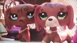 Littlest Pet Shop: ♰Kissing Sin♰ (Episode #30 The king died)