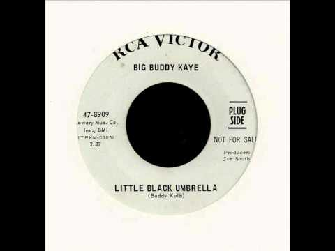 big buddy kaye + little black umbrella + rca