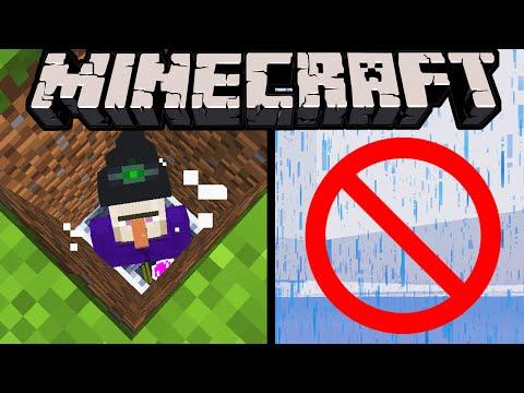 Minecraft 1 11 Snapshot Villager Amp Horse Names Banner