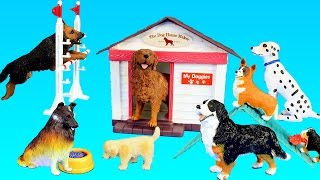 Toy Dogs School Playset For Kids - Learn Animal Names For Kids