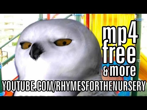 Snow Owl Reads Family Nursery Rhymes for Every Twinkle Twinkle Little Star