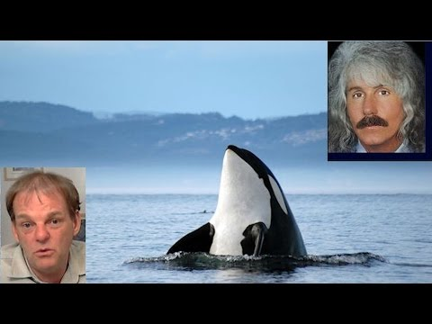 New Years Eve FUKUSHIMA Rense Radio Special - In Memory of the Pacific Orca
