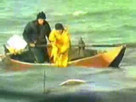 Pescatori Al Trasimeno In Un Vhs Degli Anni '80