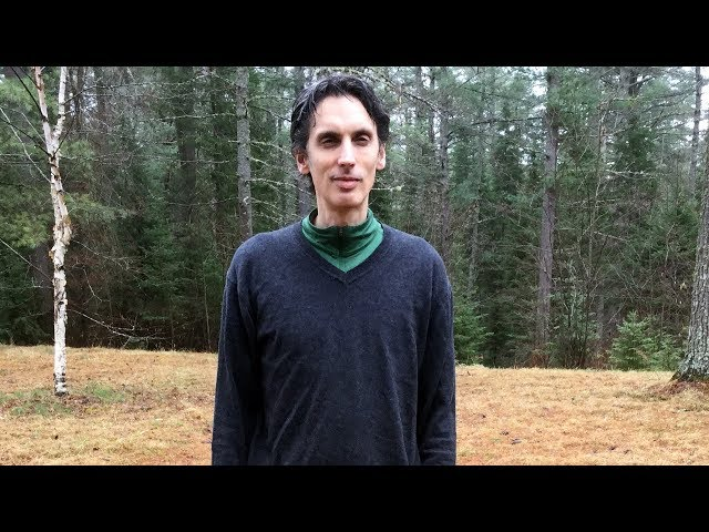 Daniel Schmidt - Awaken the World Films/ Samadhi Patreon Video