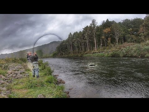 Fly Fishing Epic River. Best It's Ever Fished!