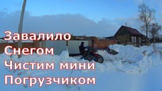 Побелка сараяУборка снегаПорода свинейСоседи