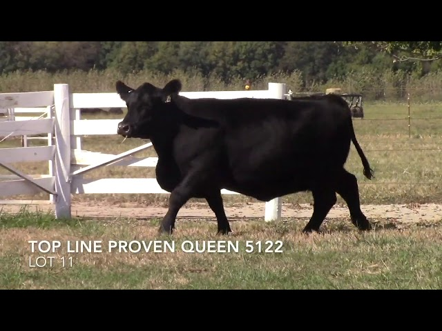 Top Line Farm Lot 11