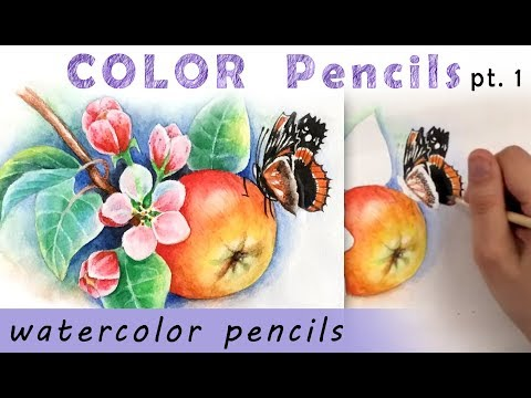 """""""Sakura, apple butterfly"""" How to draw 🎨WATERCOLOR pencils tutorial Part 1"""